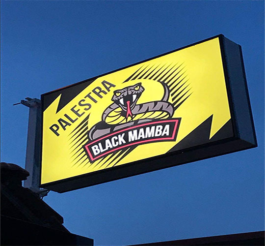 Palestra Black Mamba